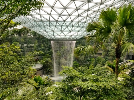The rain vortex in Singapore . Photo courtesy of Peter Walker Landscape Architects