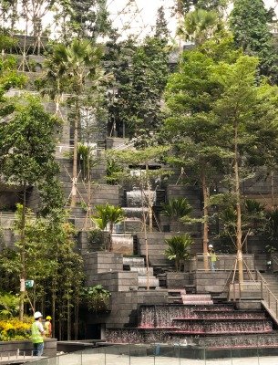 Temperature controlled indoor forest cooled by the waterfall. Photo courtesy of Charu Kokake Col.