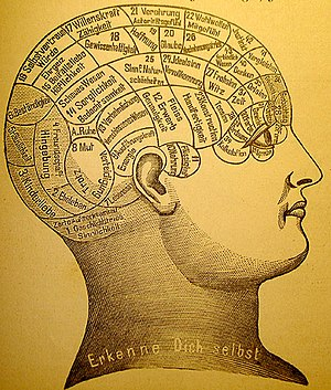 Phrenological map of the mind. Courtesy of wikipedia