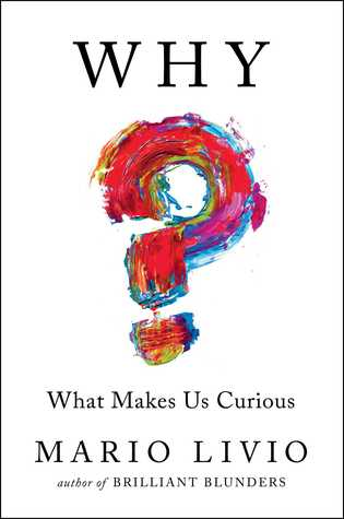 ? What Makes Us Curious